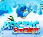 Arctic Story המשחק