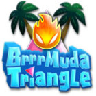 Brrrmuda Triangle המשחק