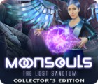 Moonsouls: The Lost Sanctum Collector's Edition המשחק