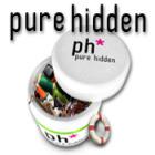 Pure Hidden המשחק