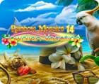 Rainbow Mosaics 14: Hawaiian Vacation המשחק