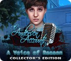 The Andersen Accounts: A Voice of Reason Collector's Edition המשחק